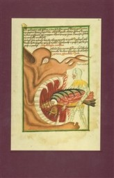 The Jena Codex