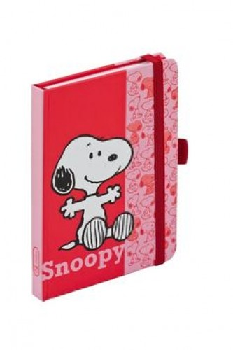 Snoopy, journal notes - 9x13 cm, linkovaný